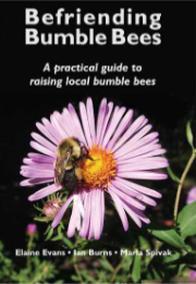 'Befriending Bumble Bees' Book